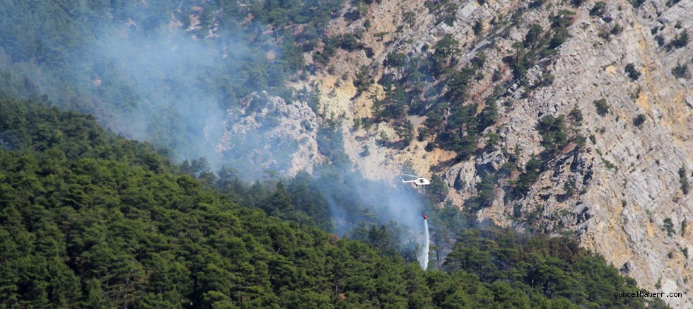 Antalya yine yanıyor!