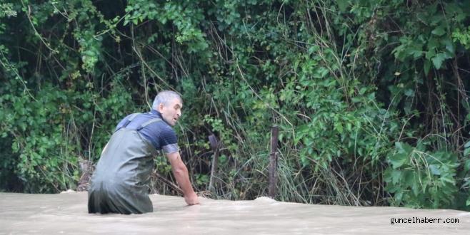 Kozan'da şiddetli yağış! Tarlalarda balık tuttular