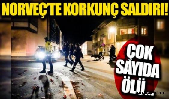 Norveç'te oklu saldırgan en 4 kişiyi öldürdü!